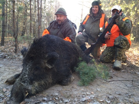 Охота на гуся в Тамбове и Тамбовской области