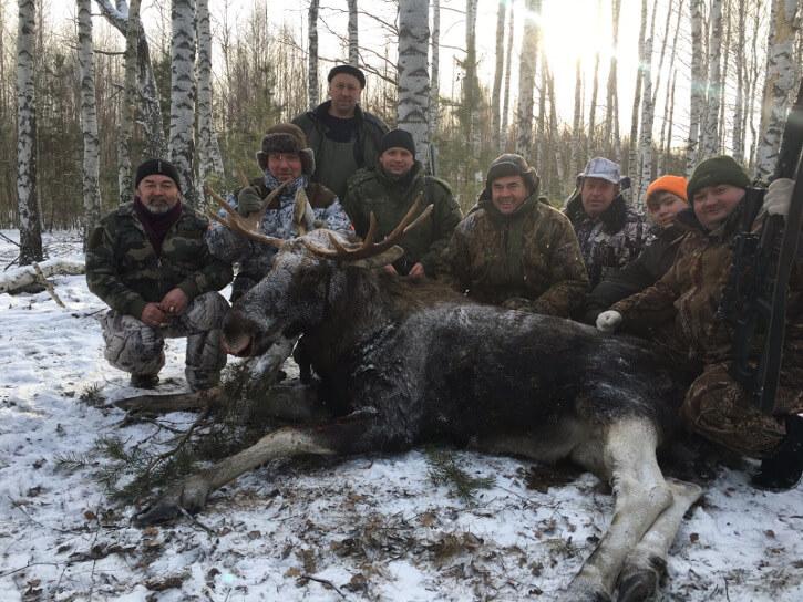 Охоты в области
